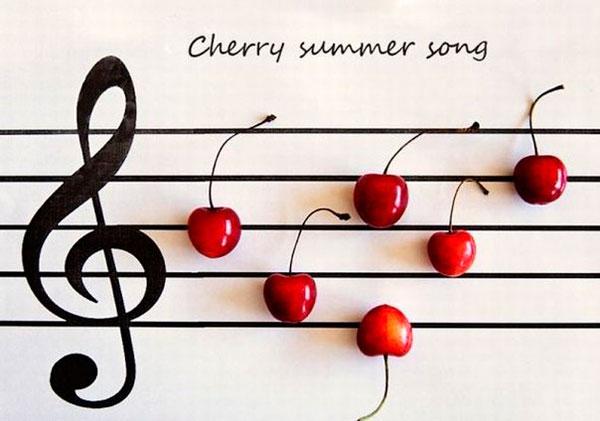 Музыка. Ненаглядные мысли о музыке