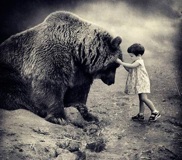 Животные. Мысли учёных о животных