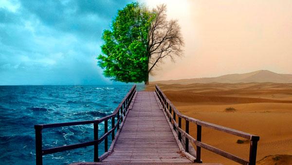 Познание. Райские цитаты о познании